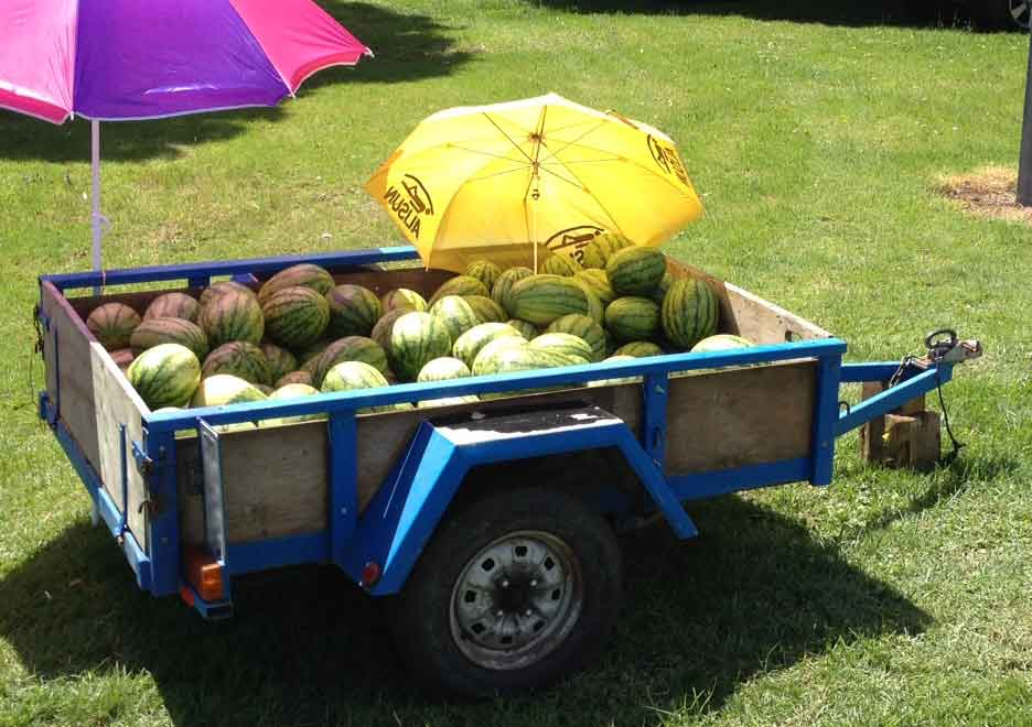 Watermelon-Trailer.jpg
